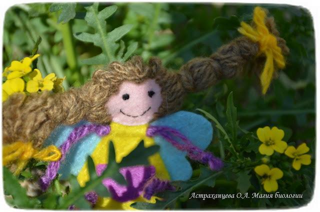 zagadki-pro-vesennie-cvety-podsnezhniki-adonis-horispora-sibirskaya-kandyk-sibirskij-proleska-prolomnik-pervocvet-badan-leontica-altajskaya
