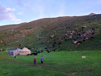 nocleg w jurcie Kirgistan