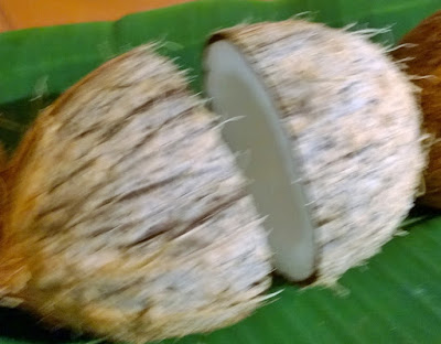 how to break a coconut nicely