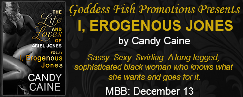 http://goddessfishpromotions.blogspot.com/2016/12/book-blast-i-erogenous-jones-by-candy.html