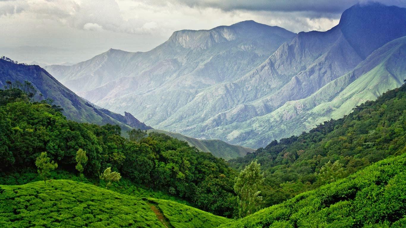 Munnar: Hills, Tea Plantations and Spices