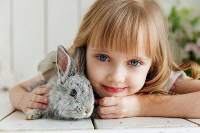 صور ارانب 2022 اجمل خلفيات ارانب