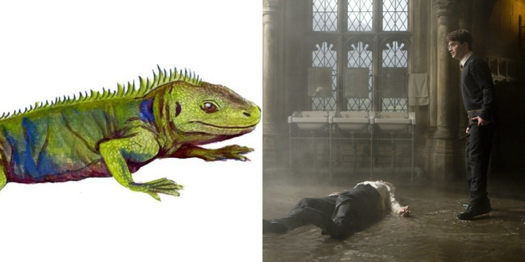 Lizard Harry Potter Name