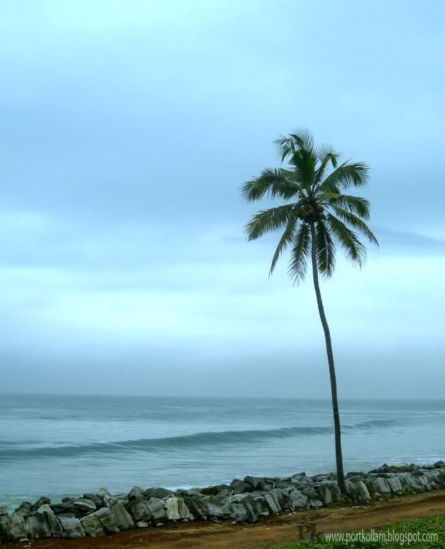 "Ashtamudi Lake: PORT KOLLAM...: The Beautiful "" Paravur """