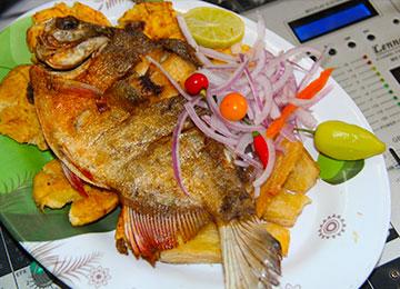 Comidas Y Bebidas De La Selva Peruana