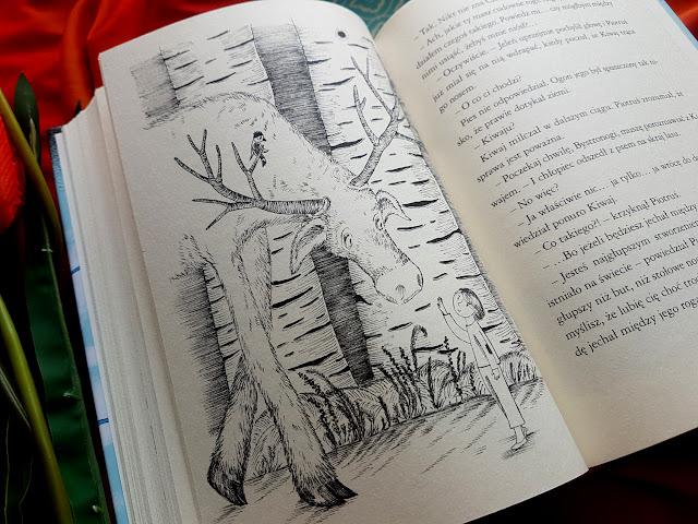 """""""O chłopcu który szukał domu""""- Anita Graboś - Irena Jurgielewiczowa - książeczki dla dzieci - książki dla młodzieży - książki o wartościach - Nasza Księgarnia"""
