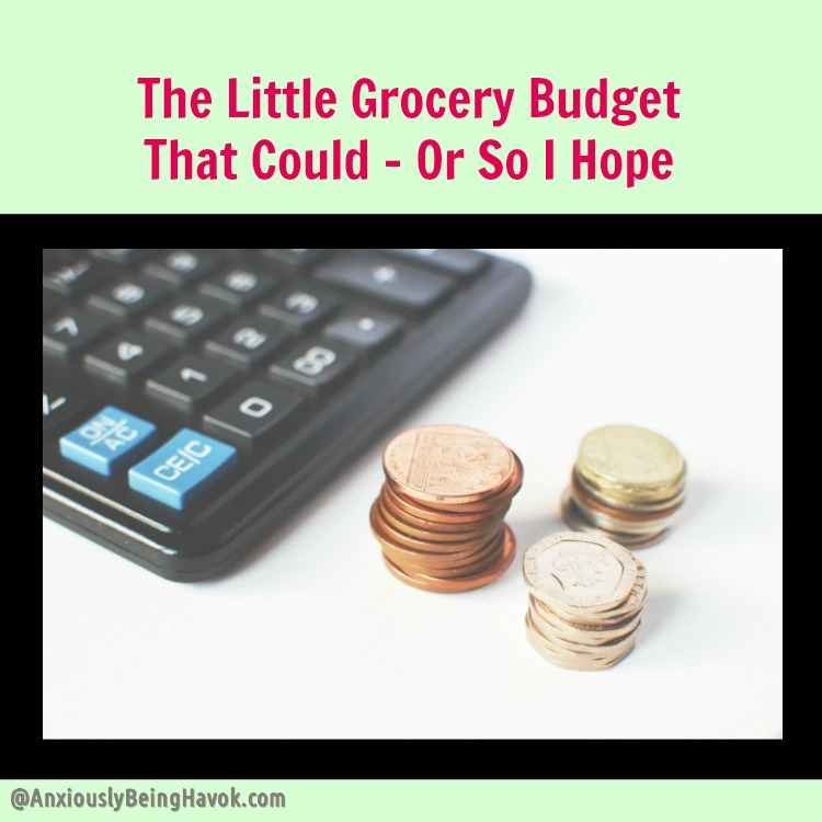 The Little Grocery Budget That Could - Or So I Hope | When cutting expenses is necessary | Anxiously Being Havok