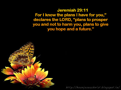 Christian wallpapers bible verse wallpaper jeremiah 29 11 - Jer 29 11 kjv ...