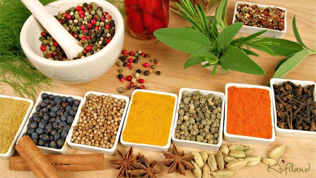 Spice Plantations Visit in Thekkady