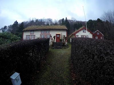 Dom z trawą na dachu Norwegia