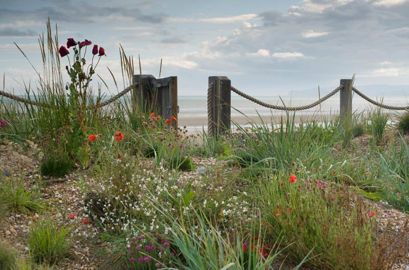 Jardín costero. Camber Sands, East Sussex, UK Jo Thompson