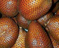 How to improve your memory? Nothing more easy in alternative medicine. It's called Memory fruit - Snake fruit (Salacca Zalacca, Salak) because it helps to improve memory.