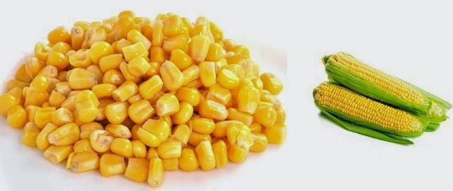 Os beneficios do milho verde para a saúde