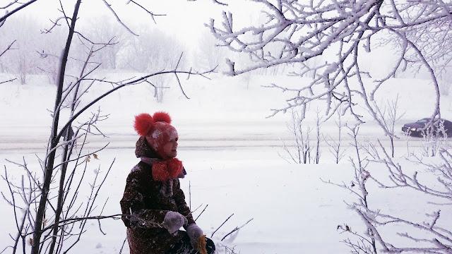 в сказочном зимнем лесу...