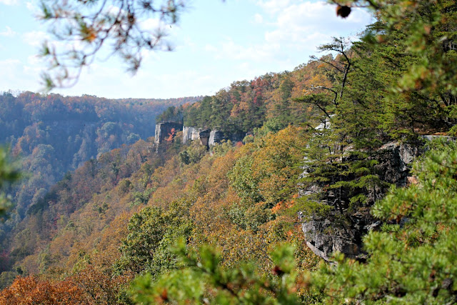Hugging the rim of the New River Gorge for about 2 miles, the Endless Wall Trail provides hikers with breathtaking vistas by way of its many rocky overlooks and steep cliffs.