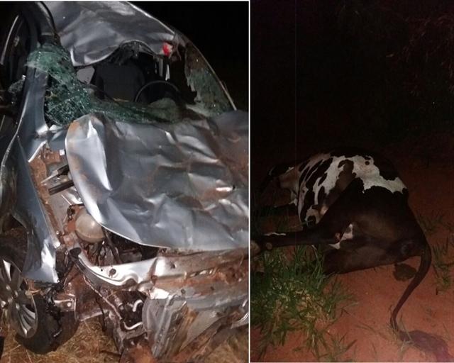 Homem morre após bater em vaca na PR-558