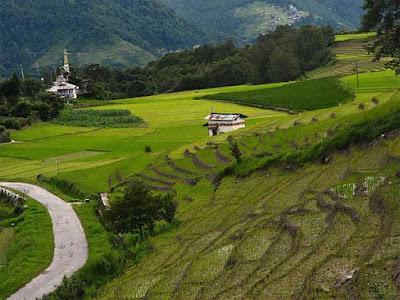 Beautiful Ziro Valley