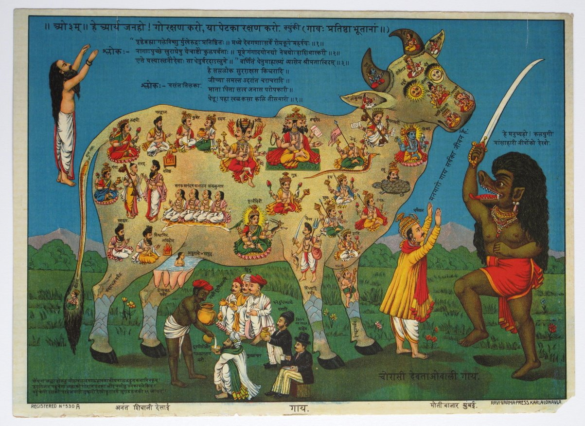 The Holy Cow, Moti Bazar Mumbai (Bombay), Lithograph Print, Ravi Varma Press c1910s