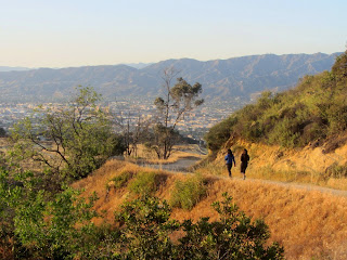 View north on North Trail, Griffith Park