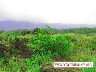 Tempat wisata lava Tumuli Gunung Batur Kintamani