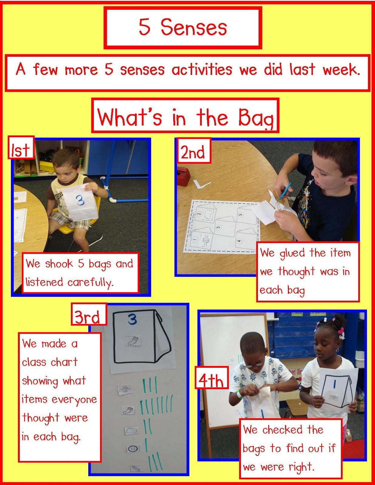 Golden Gang Kindergarten 5 Senses Freebies