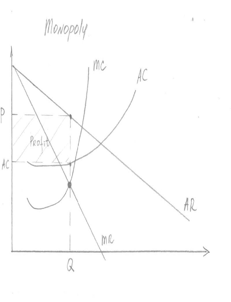 Microeconomics with Tatiana P winter 2012