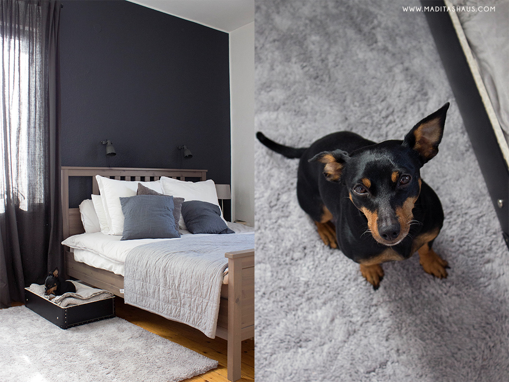 das perfekte hundebett f r kleine r ume schlafzimmer maditas haus lifestyle und interior blog. Black Bedroom Furniture Sets. Home Design Ideas