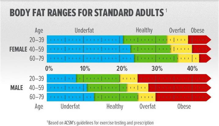 body fat chart for women