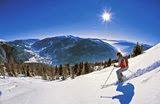 Landal Ski Parks