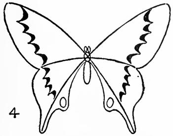 come disegnare una farfalla a matita
