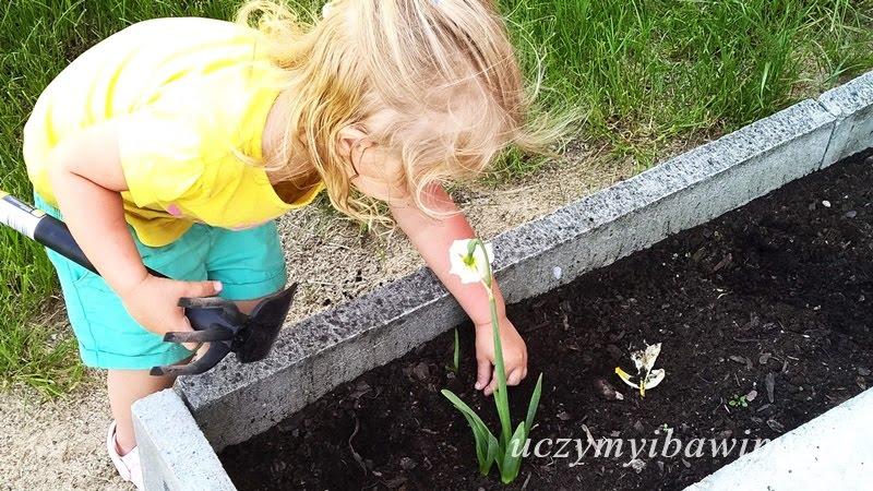 Ogródek - Montessori