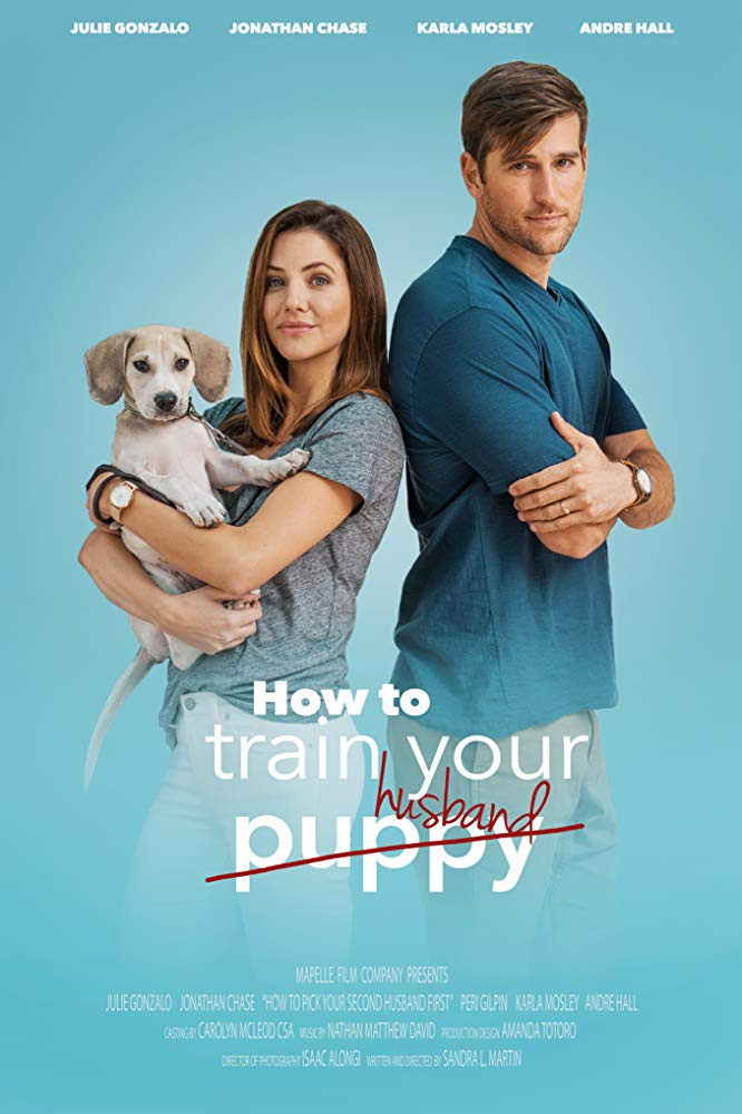 How to Train Your Husband 2018 Hindi Dual Audio 720p HDRip 600MB