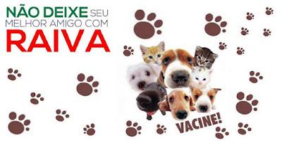 Saúde da Ilha inicia no dia 6/11 vacinação contra a raiva animal