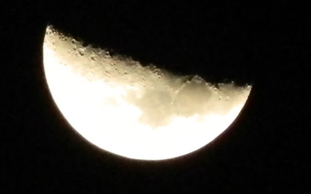 Half Moon with Nikon L120 at night