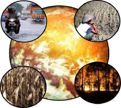Akibat atau dampak efek rumah kaca - berbagaireviews.com
