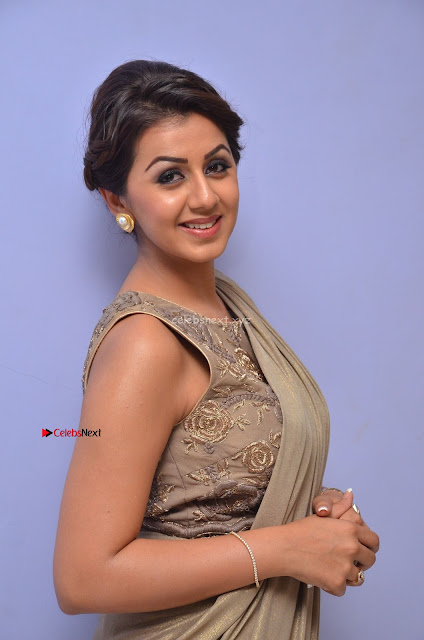 Nikki Galrani in Saree 043.JPG