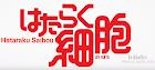 Mission! Ken Kou Dai Ichi Lyrics (Hataraku Saibou Opening) - Kana Hanazawa, Tomoaki Maeno, Daisuke Ono & Kikuko Inoue