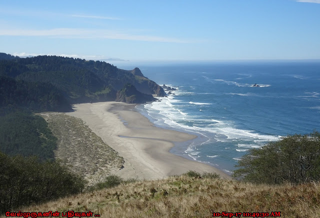 Cascade Head Scenic Research Area Oregon