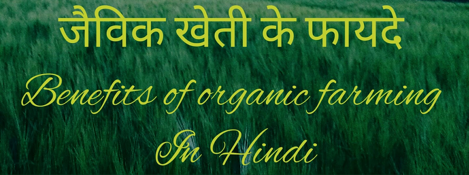 importance of farmer in hindi