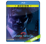 John Wick 2: Un Nuevo Dia Para Matar (2017) Full HD BRRip 1080p Audio Dual Latino/Ingles 5.1