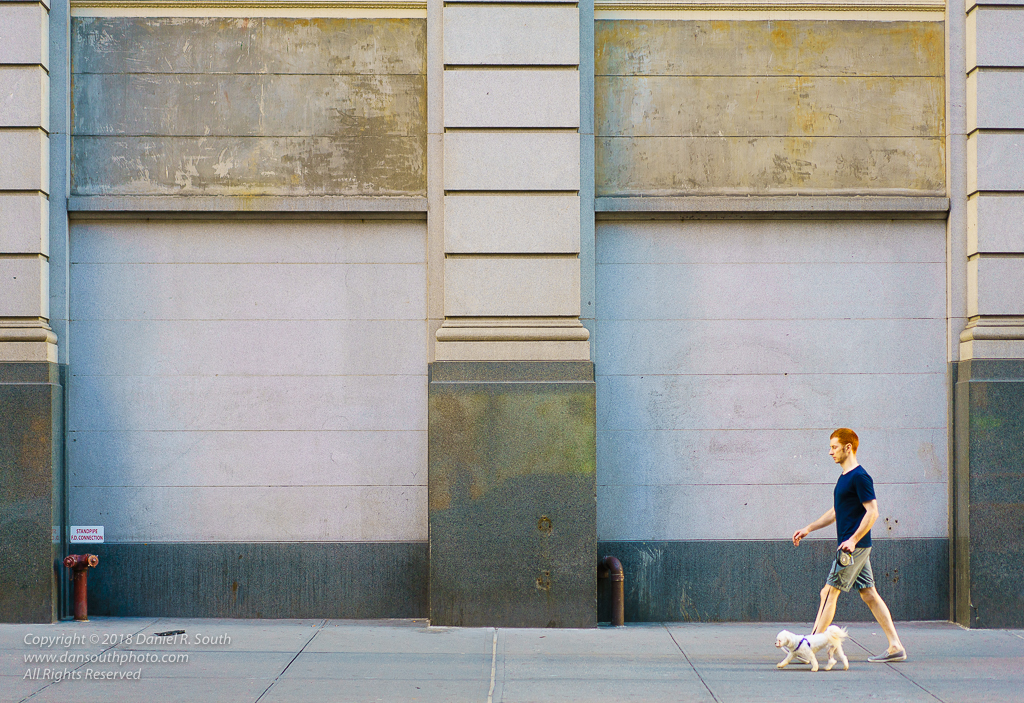 a photo of a Red-Haired Man Walking a White Dog by Daniel South Photographer