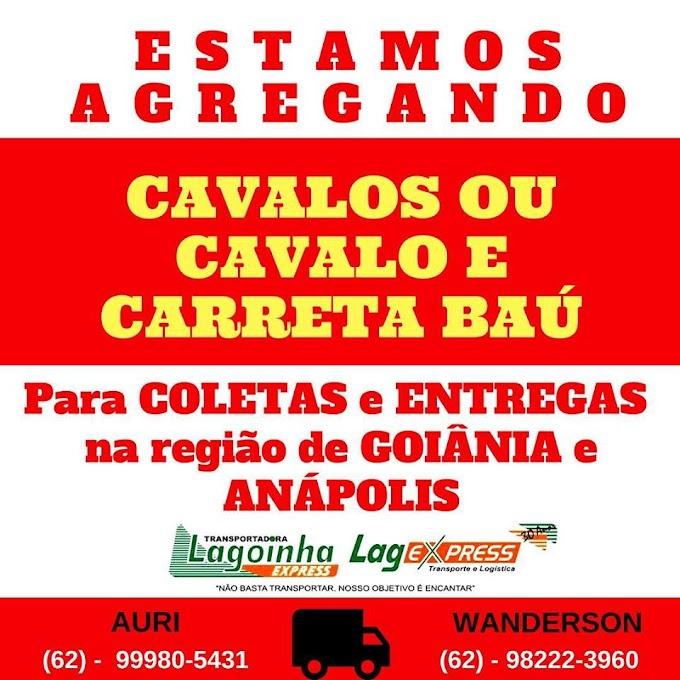 LAG EXPRESS  ESTÁ AGREGANDO  CAVALOS  E CARRETAS