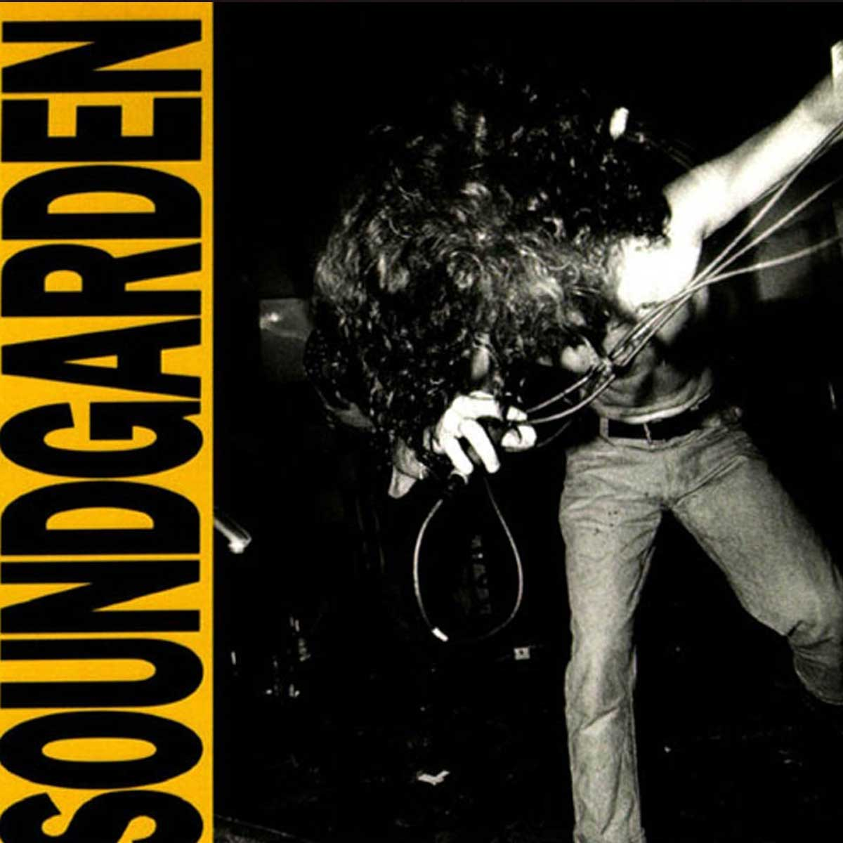 Rock 'N Roll Insight: An In-Depth Look at Soundgarden's ...