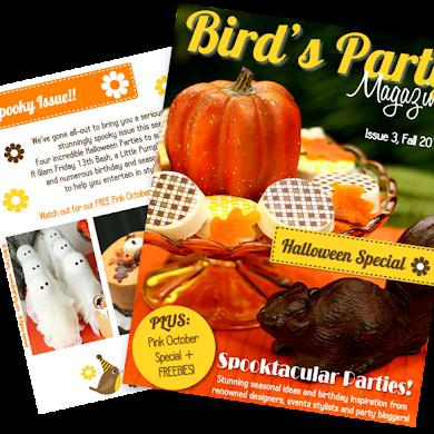 Bird's Party Magazine now in print