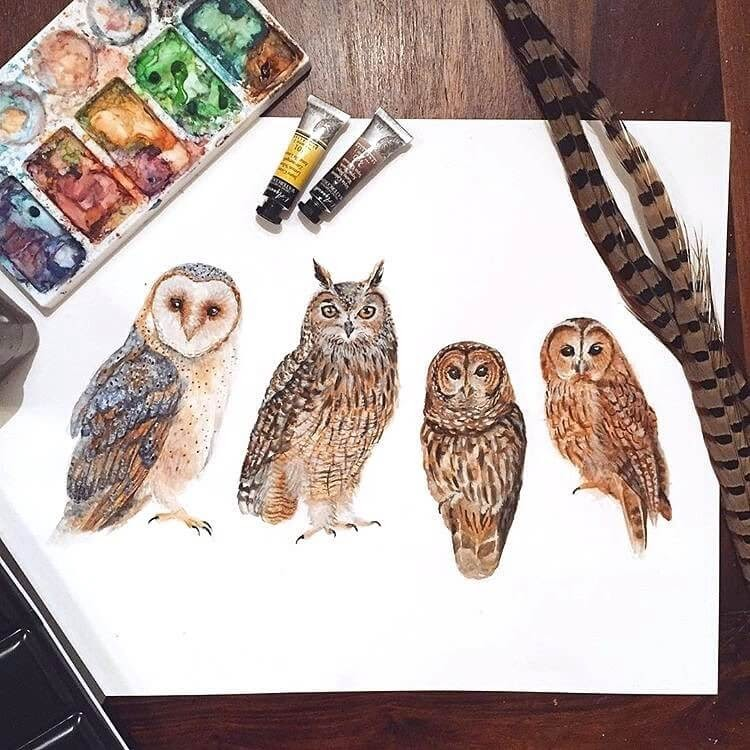 05-Owl-Family-Kathrin-Schwarz-Animal-Paintings-in-Different-Styles-www-designstack-co