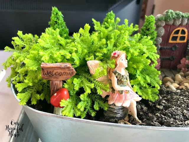 fairy garden welcome sign small plants container