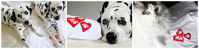Two Dalmatian dogs and a cat with homemade paw print heart t-shirt