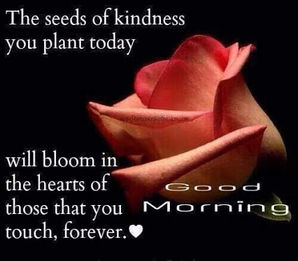 Good Morning quote best