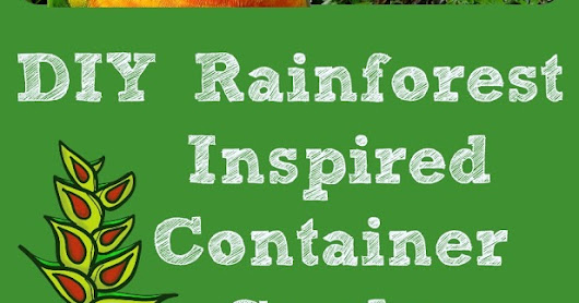 Capri + 3: Easy DIY Rainforest Inspired Container Garden