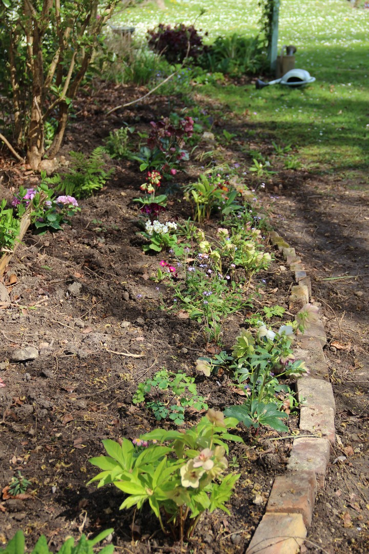 Derri re les murs de mon jardin avril 2016 - Derriere les murs de mon jardin ...